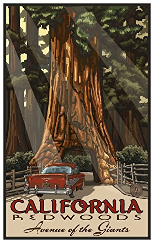 California Redwoods Avenue of The Giants Travel Art Print Poster by Paul A. Lanquist (12