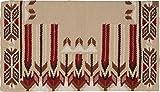 Southwestern Equine American Heritage Special Edition Good Medicine Blanket Made Rein Maker Show Blanket
