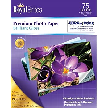 Amazoncom Royal Brites Premium Glossy Photo Paper 85 X 11