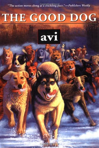 the good dog avi 2015689838255 amazon com books