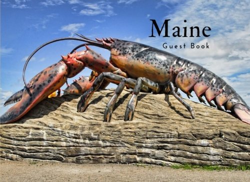 Buy maine airbnb