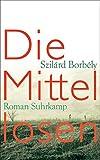 Die Mittellosen: Roman (suhrkamp taschenbuch, Band 4664)