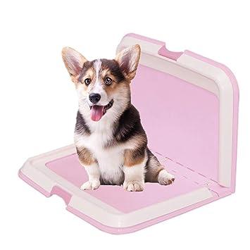 HYMY Inodoro Portátil para Cachorros Mascotas con Inodoro Plegable ...