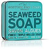 Scottish Fine Soaps Seaweed Soap 100g in Tin