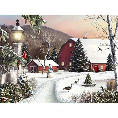 Connoworld Christmas Winter Scenery DIY 5D Creative Full Diamond Painting Cross Stitch Rhinestone Handmade Craft Home Decor Resin Mosaic Picture Handcraft Tool Kit Wall Hanging Decor V020 ()