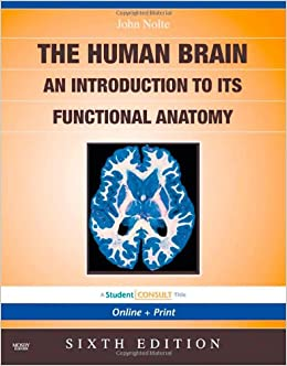 Noltes The Human Brain An Introduction To Its Functional