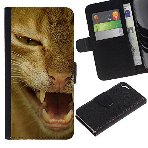 TaiTech / Housse Coque étui Etui en cuir - Orange Shorthair American Cat Hissing - Apple Iphone 5 / 5S