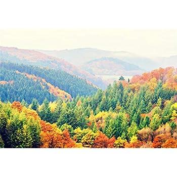 Amazon Com Leyiyi 9x6ft Autumn Forest Park Backdrop