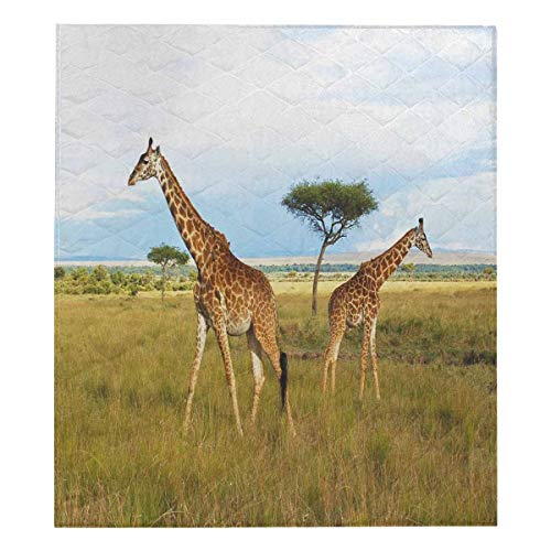 InterestPrint Pair of Giraffes on The Massai Mara, Kenya Comforter Set Thin Quilt Lightweight Comforter
