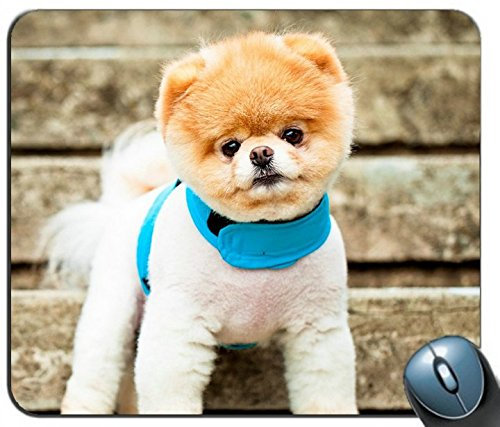 Pomeranian Dog Breed face Eyes Ears Collar Stairs 93902 Personalized Rectangle Mouse Pad, Printed Non-Slip Rubber Comfortable Customized Computer Mouse Pad Mouse Mat ()