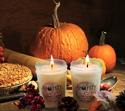 EarthGlo Winter Candles - Scented Soy Candle Set In Gift Box - Fall Spice And Cranberry Harvest - Perfect Holiday Scents With Pumpkin And Cinnamon - Perfect Soy Candles For Fall And Christmas