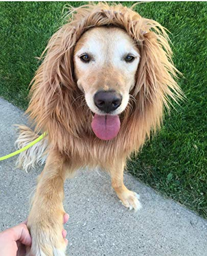 Unicool Dog Lion Mane Wig for Medium Large Dogs with Ears&Tail Funny Realistic Cosplay Costume Adjustable 30 inches with String Perfect for Halloween Dog Dress-up