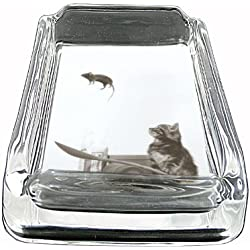 Glass Square Ashtray Cat And Mouse On Catapult Whiskey D-388