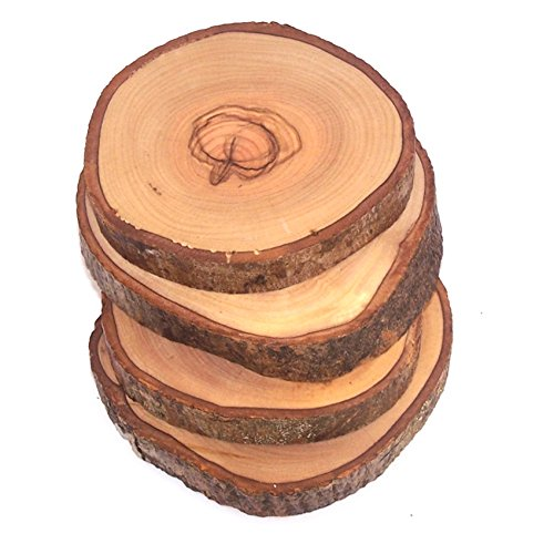 Holy Land Market Hand Carved Olive Wood Natural Coaster Set of 4 (About 3.5 Inches Each) - Asfour Outlet Trademark