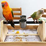 QBLEEV Parrot Play Wood Stand Bird Grinding Perch