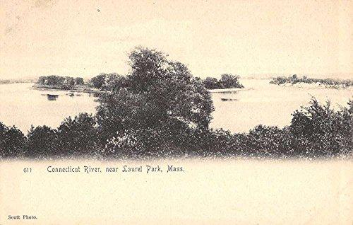 Laurel Park Massachusetts Connecticut River Waterfront Antique Postcard - Stores Laurel Park