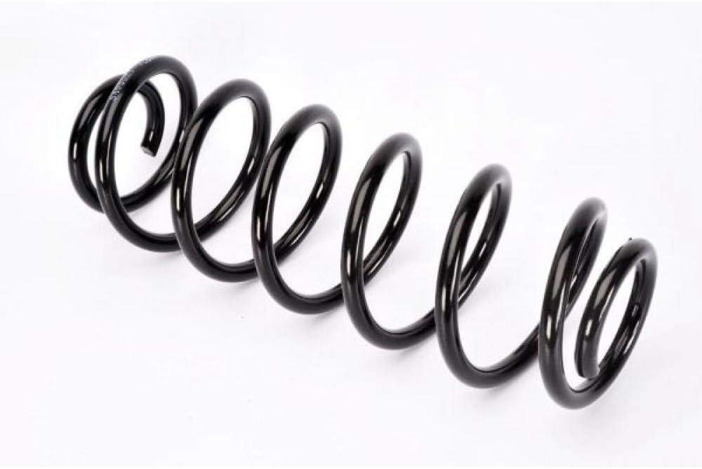 Magnum Technology SA055MT Fahrwerksfeder Spiralfedern Spiralfeder Schraubenfeder Hinten