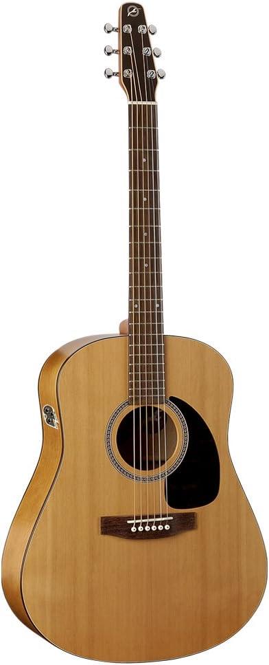 Seagull S6 QI Review! - Original Acoustic Guitar w/ Godin QI 2