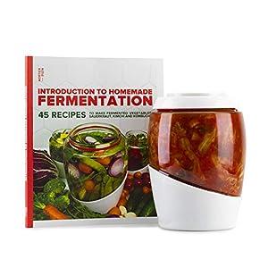 Mortier Pilon – 2L Glass Fermentation Jar + FREE Recipe Book – Make Easy Homemade Fermented Foods (kimchi, pickles, sauerkraut, organic vegetables)