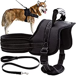 Mihachi Dog Harness with Leash with Handle No Pull No Chock Adjustable Padded Vest Harness for Dogs,Black,XL