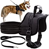 Mihachi Dog Harness with Leash with Handle No Pull No Chock Adjustable Padded Vest Harness for Dogs,Black,L