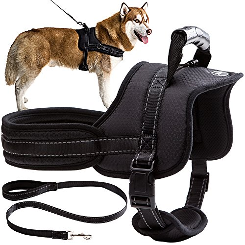 Dog Harness with Leash with Handle No Pull No Chock Adjustable Padded Vest Harness for Dogs,Black,L