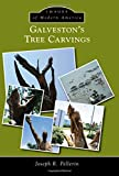 img - for Galveston s Tree Carvings (Images of Modern America) book / textbook / text book