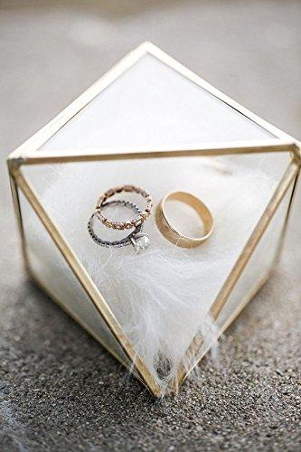 Bella's garden Mini Gold Geometric Terrarium Jewelry Display Device Wedding Ring box Brass Home Decor Container (Small) by Bella's garden