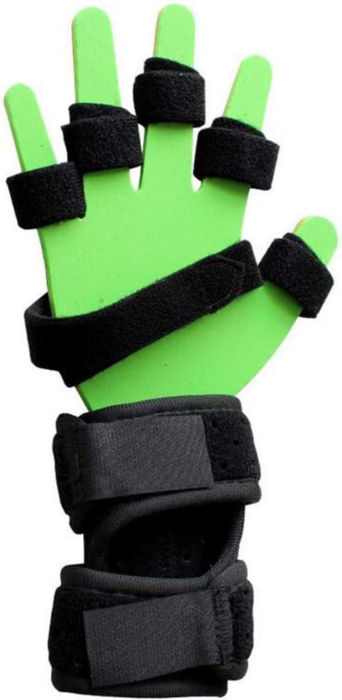 SHOWGG Diapasón Punto de Entrenamiento Dedo Placa Fija ortesis de Dedo deformación pandeo plástico Placa de Aluminio para hemiplejia,Green,L