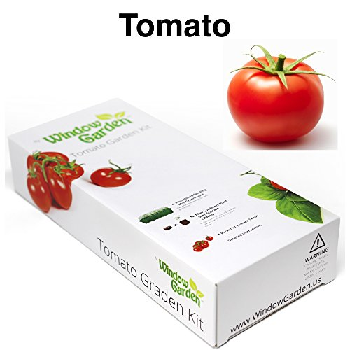 Garden Starter Kit (Tomato) Grow a Garden by Seed. Germinate Seeds on Your Windowsill then Move to a Patio Planter or Vegetable Patch. Mini Greenhouse System Make's it Foolproof, Easy and (Garden Seed Kit)