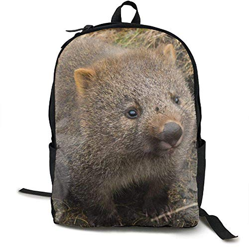DKFDS Backpacks Cradle Mountain Land Wombats