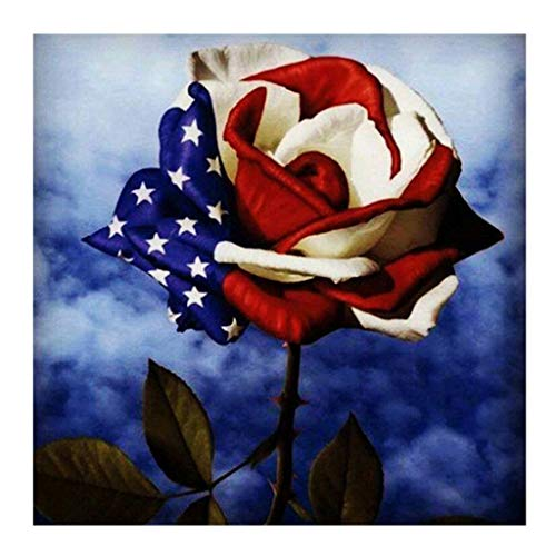 5D Diamond Painting,DIY American Flag/14th July/Eagle/Stars&Stripes/US Kits for Adults and Children Embroidery Arts Craft Home Decor Cross Stitch Arts Craft Canvas Wall Decor (C)