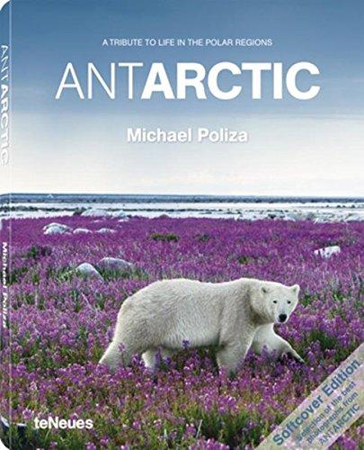 AntArctic (English And Spanish Edition)