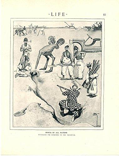 Ostrich hunting native gun-bearers art 1913 incredible vintage racist print (1913 Print)