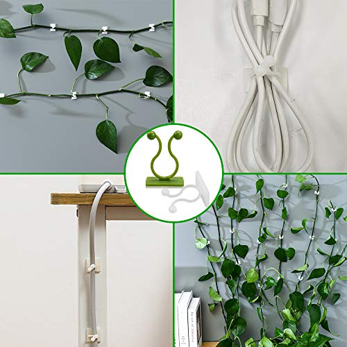 Motiloo Plant Climbing Wall Fixture Clips, 100Pcs Vine Plant Climbing Wall Fixer Self-Adhesive Hook,Wall Sticky Hook Vines Fixing Clip Vines Holder for Home Decoration (M-100pcs)