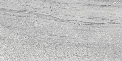 Emser Porcelain Tile (Emser Tile F02SANDMO1224
