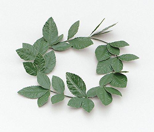 Green Laurel Leaf Headband Headwear for Ceasar Roman Emperor Fancy Dress Headwear by Partypackage (Roman Head Wear)