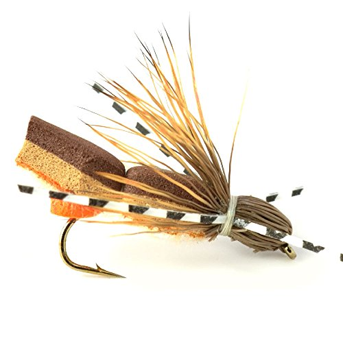 Hook Size 10 Rubber Legs Bullethead Cicada Dry Fly Fishing Flies 4 Flies