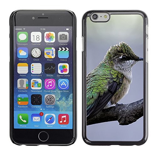 "Premio Sottile Slim Cassa Custodia Case Cover Shell // F00008086 oiseau // Apple iPhone 6 6S 6G 4.7"""