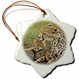 3dRose orn_71056_1 Cheetah with Cub in The Masai Mara GR, Kenya AF21 JMC0163 Joe and Mary Ann McDonald Snowflake Porcelain Ornament, 3-Inch