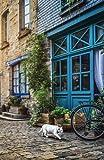 Internet Password Organizer: Normandy (Discreet Password Journal)