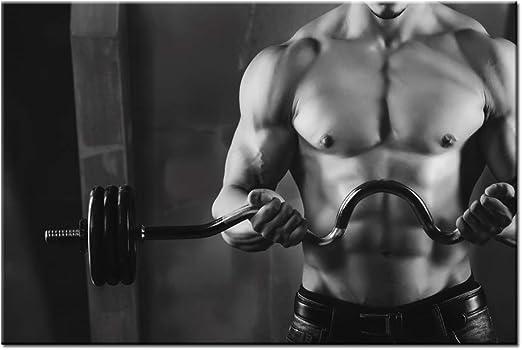 517 Arnold Schwarzenegge Body Building Art Wall Cloth Poster Print
