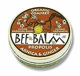 Black Hills Honey Farm, Bee Balm, Arthritis Rub, Arnica and Ginger, 4 oz