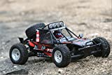 Carisma 71368 M10DB Brushless Desert Buggy Ready to Run 1/10 Scale 2WD RC Vehicles