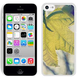 New Beautiful Custom Designed Cover Case For iPhone 5C With Nature Shine Tree Leaf Macro (2) Phone Case