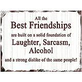 Vintage All the Best Friendships Funny Plaque Friend Metal Fridge Magnet