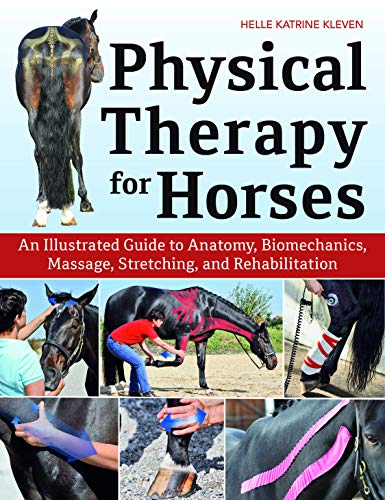 Coloring Anatomy Book Horse (Physical Therapy for Horses: An Illustrated Guide to Anatomy, Biomechanics, Massage, Stretching, and Rehabilitation)