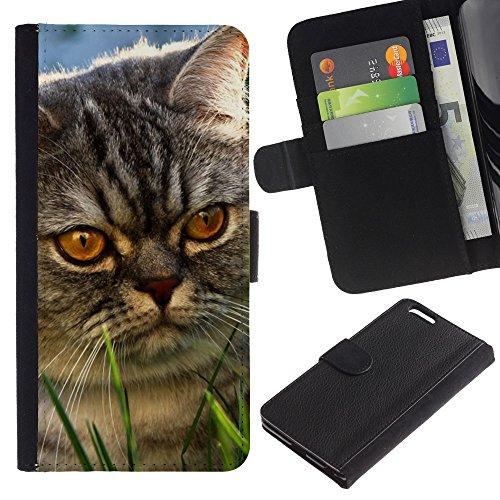 EuroCase - Apple Iphone 6 PLUS 5.5 - yellow eyes cat mongrel grey angry - Cuero PU Delgado caso cubierta Shell Armor Funda Case Cover