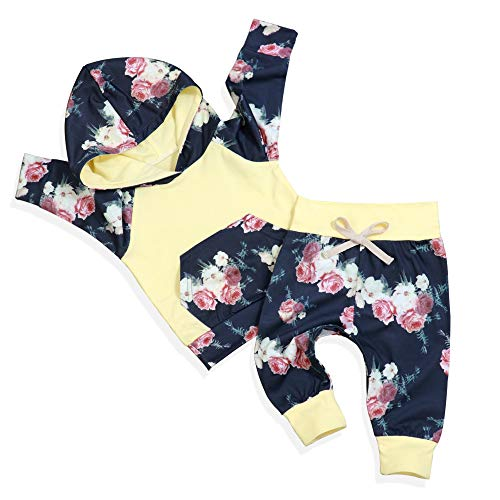 Baby Girl Clothes Toddler Long Sleeve Hoodie Sweatshirt Top and Floral Pants with Headband Infant Outfit Sets(6-12 Months)