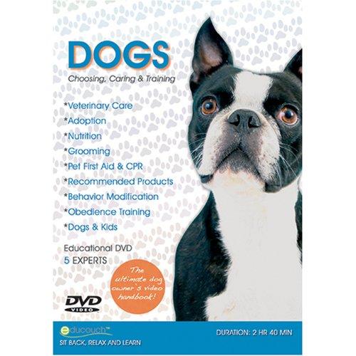dogs-choosing-caring-training